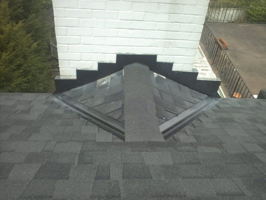 roof cricket example